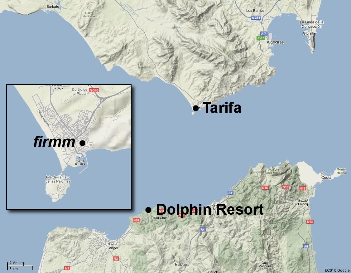 Meerenge Von Gibraltar Karte.Wale Und Delfine In Der Strasse Von Gibraltar