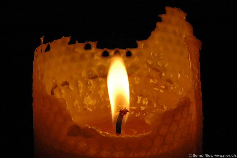 Bee wax candle