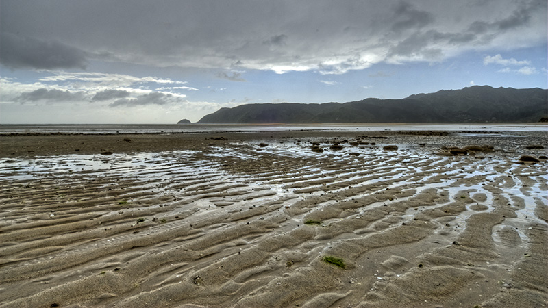 Golden Bay Mudflats