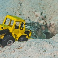 Goby with Shrimp and Excavator