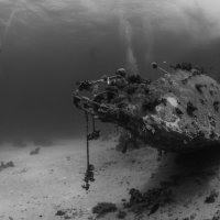Shipwreck with Divers